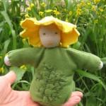 בובת פרח החרצית